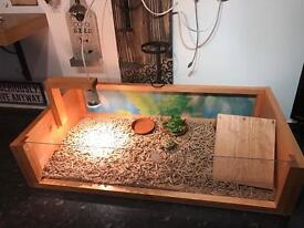 Tortoise Table Homes