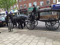 Chauffeur for Funeral Directors