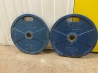 2 x 20kg blue plates