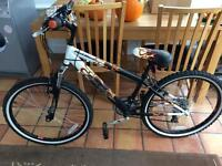 Boys Raleigh mountain bike