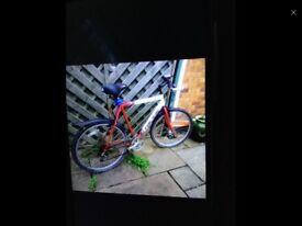 Adults Mountain Bike