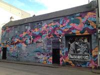 Professional Graffiti Artist/ Muralist