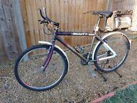 Scott Mountain Bike, Mudguards and Saddlebag included!!