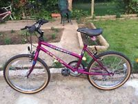 "KIDS GIRLS BOYS CHILDREN APOLLO AWESOME 13"" FRAME 20"" WHEEL 15 SPEED PURPLE BIKE BICYCLE"