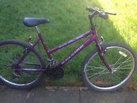 "Raleigh Max women'ss bike 26""wheels,15gears,18""frame fully working order"