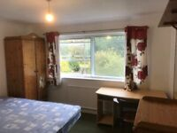 Two furnished bedrooms to let in Chelmsford