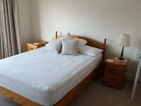Beautiful large furnished bedroom