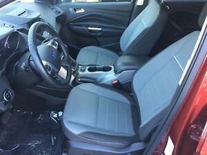 2014 Ford Escape SE Local One Owner Fully Equipped!! Edmonton Edmonton Area image 7