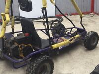 Carter petrol gokart buggy not quad sell or swap
