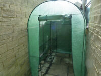 WALK IN GREENHOUSE / POLY TUNNEL GREENHOUSE / GARDENING / OUTDOOR /