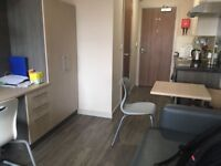 superior studio to rent