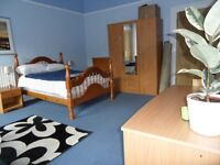 Large room available for post-grad student in fabulous Newington flat from 1st February £450/month