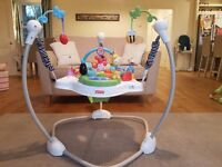 Fisher Price Discover 'n Play Jumperoo