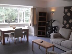Large BH1 Room in Fantastic 3 bed flat Available Now !!