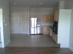 WHEELCHAIR FRIENDLY 1 bedroom apt at Chelsea Place!