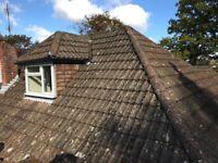 Double Roman roof tiles