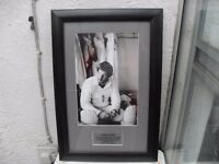 IAN BOTHAM ASHES PHOTO IN GLASS FRAME