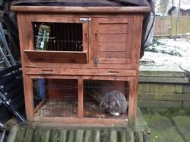 Outdoor cage rabbit