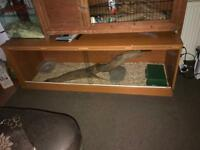 5ft vivarium and corn snake