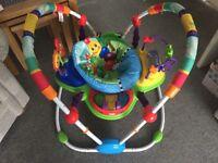 Baby Einstein Activity Jumper Jumperoo - Immaculate