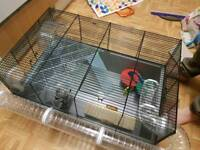 Large Hamster Cage with Tube Run