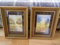 Two water colour pictures