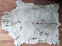 Large Reindeer Skin