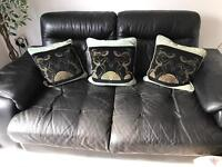 3 mint and black cushions