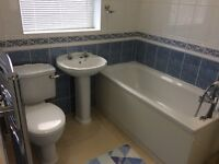 Bath ,wash basin ,wc cistern chrome towel rail , chrome bath tap spray head