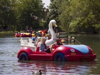 Pedalo Pedal Paddle Boat For Sale Any Where Commercial Must Be In Good Condition