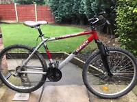 adults rockrider mountain bike