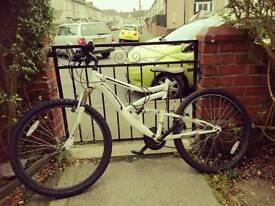 Bargain Mountain Bike
