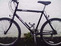BSA Westcoast mountain bike