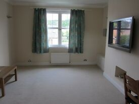 Immaculate bright and sunny 2 bedroom first floor flat for rent in DECHMONT