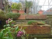 7 x Solid Stone decorative planting troughs (originally actual farm feeding troughs)