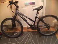 Trek 3900 mountain bike (bargain)