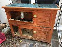 Guinea Pig Hutch For Sale
