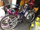Brand new bike £80 ono