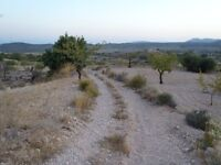 Two large plots of buildable land for sale in a lovely village Barinas, Murcia, Spain