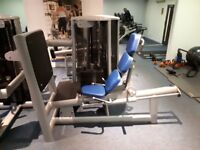 Seated Leg Press Gym 80 Sygnum (superior to the Life Fitness/Technogym model) immaculate £1,750.