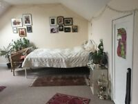 Large double room near Preston Park station