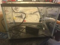 30 cm fish tank with filter