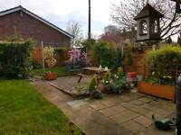 Swap 1 bed semi bungalow in Filby