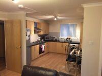 En-Suite Double Room Available