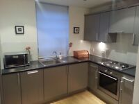 Fully Furnished One Bedroom Flat in City Centre