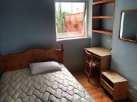 Double room in Spacious house in Roath, close to Universities and City Centre