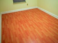 Laminate flooring , plastering, painting