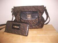 DKNY Bag and Purse