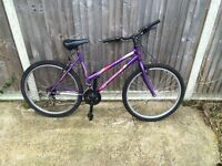 cheap ladies mountain bike ideal for students