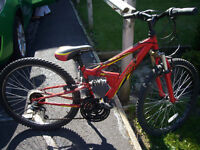 Apollo FS Full SUSS Technology childs bike